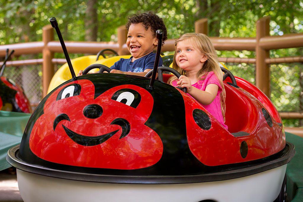 Busch Gardens kids